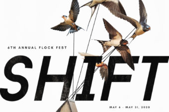 Call for Submissions: FLOCK FEST